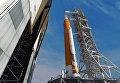 Так художник представил себе ракету SLS, стоящую на космодроме