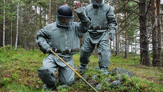 Саперы обезвреживают артиллерийские снаряды, найденные неподалеку от лагеря волонтеров Русского географического общества Гогланд