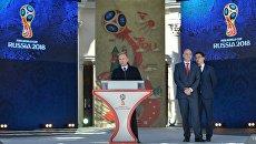 Президент России Владимир Путин выступает на церемонии старта волонтёрской программы Кубка конфедераций FIFA 2017 и ЧМ по футболу FIFA 2018