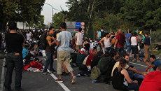 Беженцы на сербской границе ждут возможности перейти на венгерскую сторону. Архивное фото