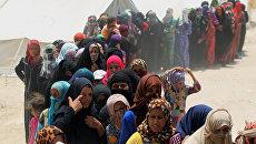 Беженцы из города Эль-Фаллуджа. Архивное фото
