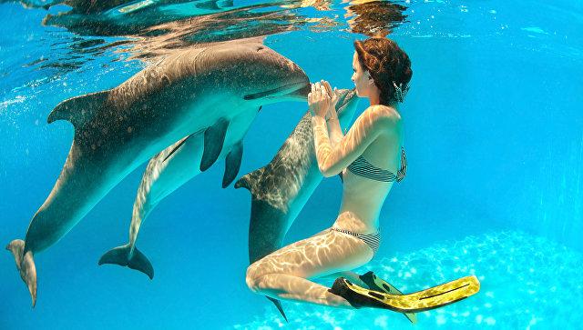 Девушка с дельфинами под водой
