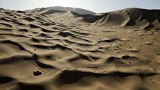 В пустыне Гоби. архивное фото
