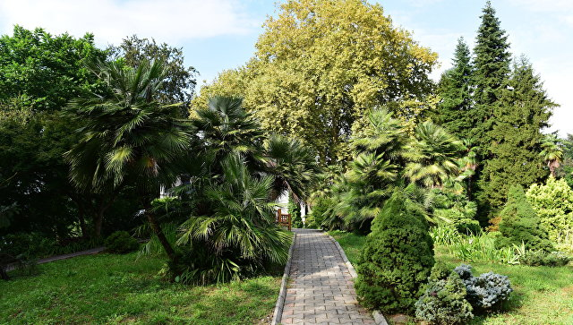 ВГанмухури будут построены ботанический парк и5-звездочная гостиница