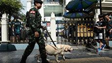 Тайский солдат. Архивное фото