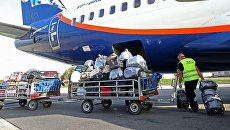 Выгрузка багажа из самолета на взлетно-посадочной полосе аэропорта Храброво в Калининграде. Архивное фото