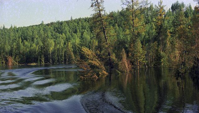 Минприроды заключило с«Илимом» соглашение оборганизации природоохранных мероприятий вПриангарье