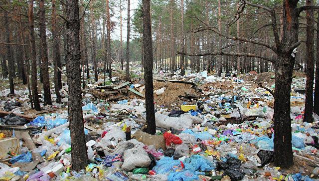 Госадмтехнадзор ликвидировал наминувшей неделе 13 навалов отходов