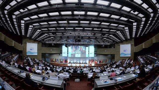 Парламентская ассамблея Организации по безопасности и сотрудничеству в Европе (ОБСЕ). Архивное фото