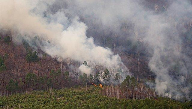 Неменее 70 гектар леса полыхает вБайкало-Ленском заповеднике