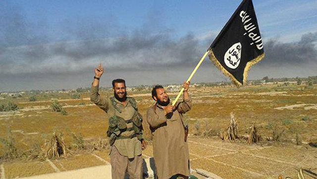 Боевики террористической группировки Исламское государство (ДАИШ)