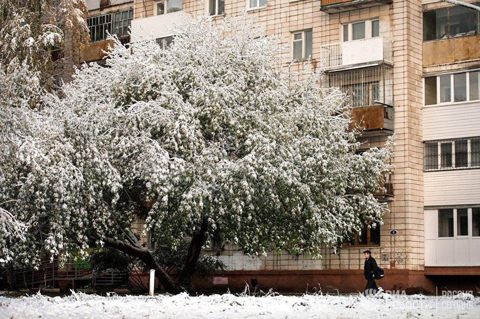 Лите зимой