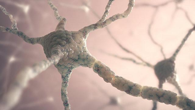Ученые посоветовали лечить болезнь Альцгеймера генной терапией