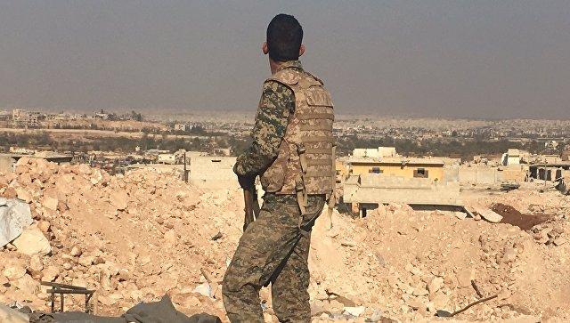 Боец сирийской армии смотрит на город Алеппо с высоты узла мобильной связи. Архивное фото