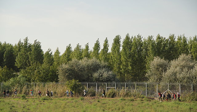 Венгрия достроила вторую линию заграждений награнице сСербией