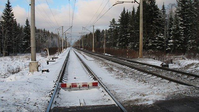 В столице России из-за обледенения контактной сети опаздывают электрички