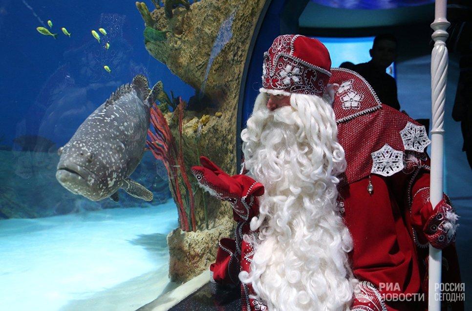 Всероссийский Дед Мороз во время посещения Москвариума на территории ВДНХ