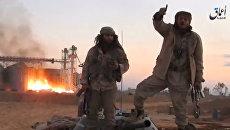 Боевики террористической группировки Исламское государство в районе Пальмиры, 11 декабря 2016