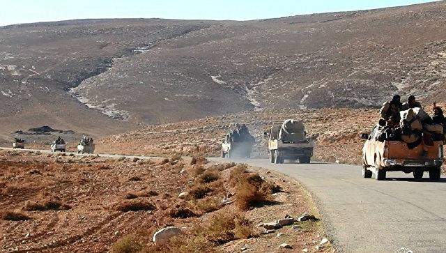Боевики террористической группировки Исламское государство (ИГ, запрещена в России) в окресностях Пальмиры, Сирия. Декабрь 2016