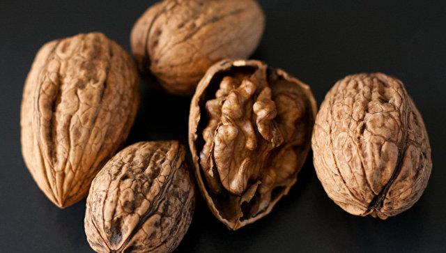 НаСумской таможне заявили, что мыши съели две тонны конфискованных орехов