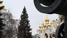 Новогодняя ёлка и на Соборной площади Кремля в Москве