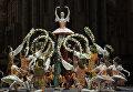 Репетиция балета Спящая красавица в Большом театре в постановке Юрия Григоровича