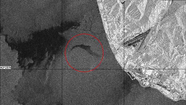 Размещен снимок зоны крушения самолёта Ту-154 изкосмоса