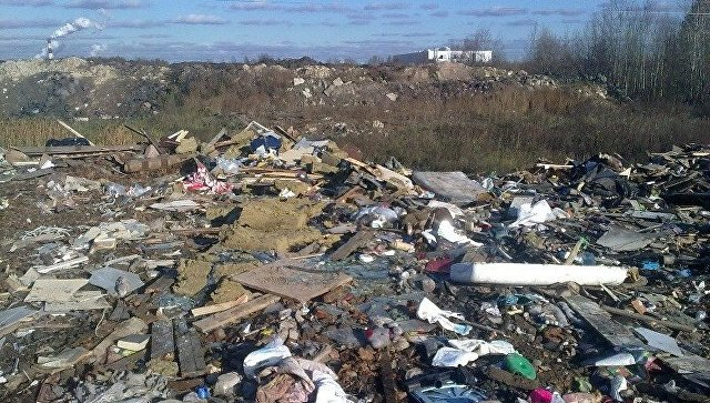 Нелегальные свалки вМосковской области нанесли вред на3 млрд руб.