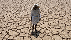 Житель Индии на высохшем хлопковом поле. 25 апреля 2016