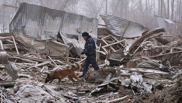 Упавший Boeing разрушил более половины участков в поселке под Бишкеком