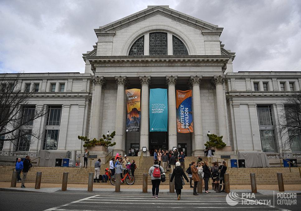 Национальный музей естественной истории в Вашингтоне