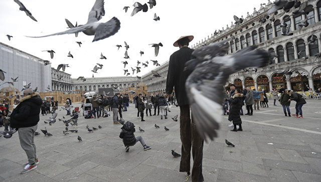 Преступники  вызвали панику наплощади Сан-Марко вВенеции
