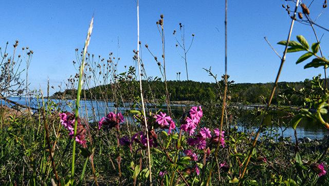 Внешние острова Финского залива