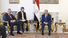 Заместитель председателя правительства РФ Дмитрий Рогозин во время встречи с президентом Египта Абдель Фаттахом ас-Сиси