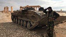 Сирийский военный возле историко-архитектурного комплекса Древней Пальмиры в сирийской провинции Хомс. Архивное фото