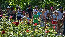 Совфед подготовит нормативные акты к закону о детском отдыхе в России