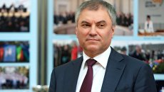 Председатель Государственной Думы РФ Вячеслав Володин. Архивное фото