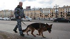 Сотрудник правоохранительных органов с собакой на улице в Санкт-Петербурге. Архивное фото
