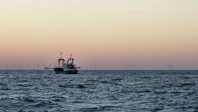 Море кокаина: бельгийская милиция выловила вморе 50кг наркотиков