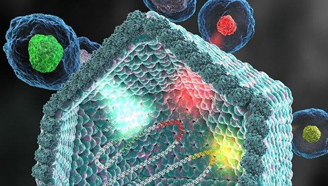 Биологи открыли семейство огромных вирусов-«франкенштейнов»