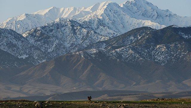 В стрельбе спакистанскими пограничниками погибли 50 военнослужащих Афганистана