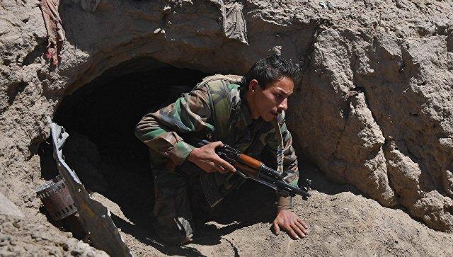 Солдат Республиканской гвардии на окраине сирийского города Дейр-эз-Зор