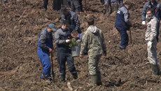 Участники акции Лес Победы посадили тысячи новых деревьев в Подмосковье