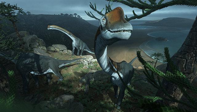 Вмузее ученые случайно обнаружили останки крупнейшего динозавра Европы