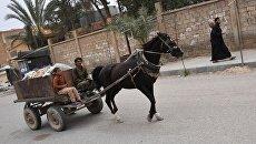 В сирийском городе Дейр-эз-Зор. Архивное фото