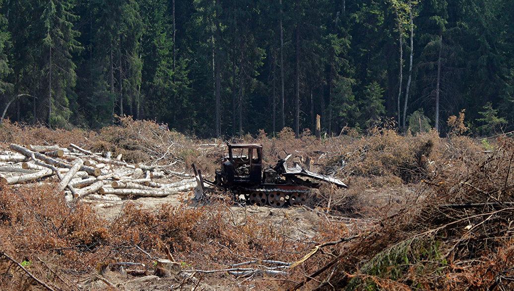 За два года ОНФ выявил экологические нарушения более чем на 122 млрд рублей