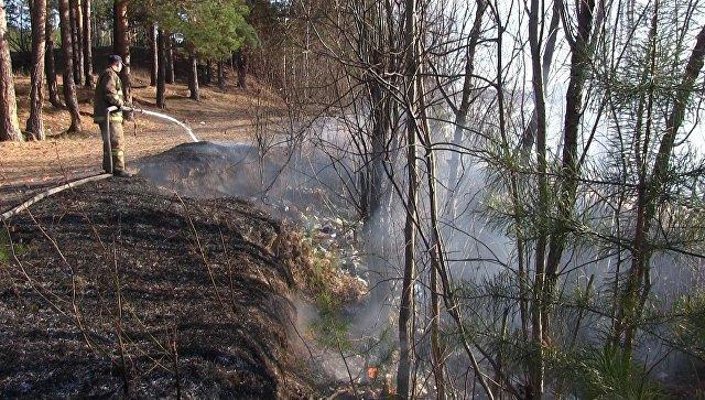 Тушение лесных пожаров в Иркутской области. Архивное фото