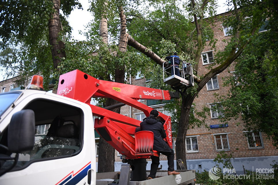Ликвидация последствий урагана в Москве