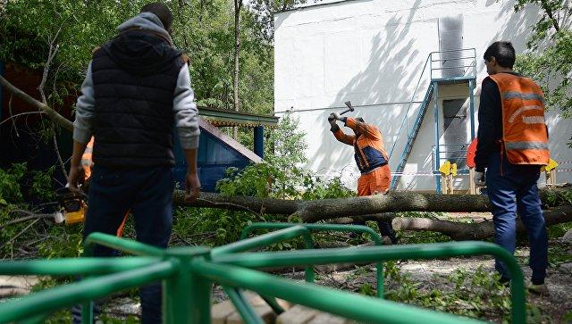 В российской столице ожидают повторения сильного урагана вночь на1июня