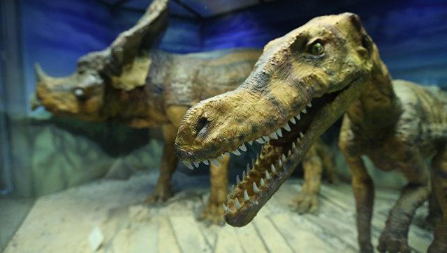 Модели динозавров. Архивное фото